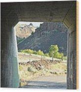 Railroad Tunnel Wood Print