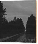 Rails Bw Wood Print