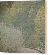 Rails Curve Into A Dreamy Autumn Wood Print