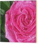 Rain Drenched Rose Wood Print