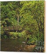 Rain Forest Bridge Wood Print