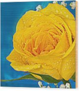 Rain On A Yellow Rose Wood Print