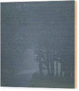 Rain Storm Wood Print by Brian Gordon Green