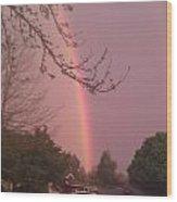 Rainbow 5 Wood Print
