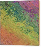 Rainbow Abstract Wood Print