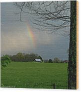 Rainbow After The Rain Wood Print
