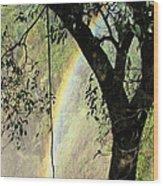 Rainbow At Victoria Falls Wood Print