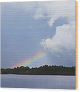 Rainbow Bright Wood Print