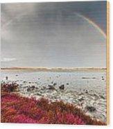 Rainbow By The Lake Wood Print