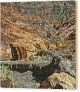 Rainbow Canyon Death Valley Wood Print