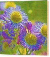 Rainbow Colored Weed Daisies Wood Print