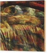 Rainbow Falls Wood Print by Jack Zulli