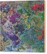 Rainbow Fish Watercolor Abstract Art Wood Print