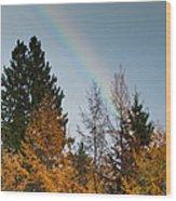 Rainbow Forest Wood Print