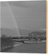 Rainbow In Black And White Wood Print