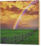 Rainbow In Country Field With Gold Wood Print