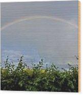 Rainbow In Warwick Wood Print