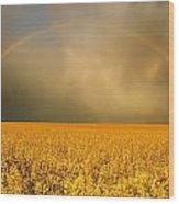 Rainbow Over Farmers Field Wood Print