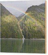 Rainbow Over Forest, Endicott Arm Wood Print