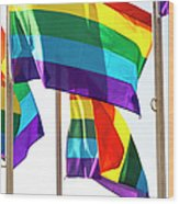 Rainbow Pride Flags Against White Background Wood Print