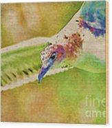 Rainbow Seagull Wood Print
