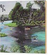 Rainbow Springs In Florida Wood Print