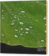 Raindrops Wood Print