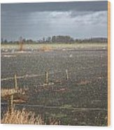 Rainfall Wood Print