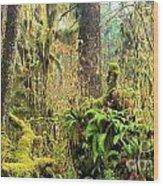 Rainforest Salad Bar Wood Print