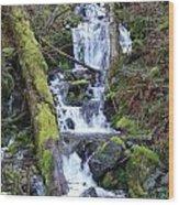 Rainforest Waterfall Wood Print