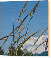 Rainier Weeds Wood Print
