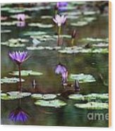 Rainy Day Lotus Flower Reflections Iv Wood Print