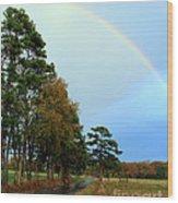 Rainy Day Rainbow Wood Print