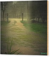 Rainy Daze Again Wood Print