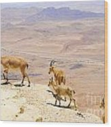 Ramon Crater Negev Israel Wood Print