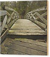 Ramsey Creek Scene 16 Wood Print