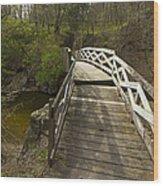 Ramsey Creek Scene 9 Wood Print