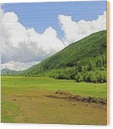 Ranching In The Boundary Wood Print