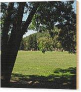 Rancho Laguna Park Wood Print