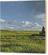 Rangeland View Wood Print