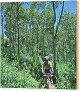 Ranger On Mountain Bike, Steamboat Springs, Colorado, United States Of America, North America Wood Print