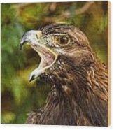 Raptor Rage Wood Print