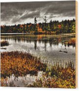 Raquette Lake In Upstate New York Wood Print
