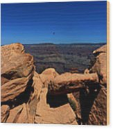 Raven Flying Near Ooh Aah Point Wood Print