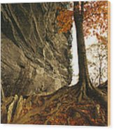 Raven Rock And Autumn Colored Beech Wood Print