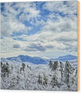Raven's View In Winter Wood Print