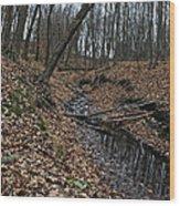Ravine Creek Wood Print