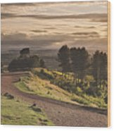 Rays Of Sunlight Over Clent Countryside Wood Print