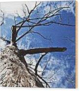 Reach The Sky Wood Print