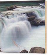 Rearguard Falls Wood Print by Terry Elniski